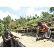 ケニア「カラトゥ・ファクトリー」 シティロースト200g