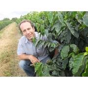 ブラジル「マカウバ・デ・シーマ農園ウォッシュト精製」シティロースト 200g ブルボン種