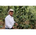 グァテマラ「サンタカタリーナ農園」 シティロースト 200g  ブルボン種